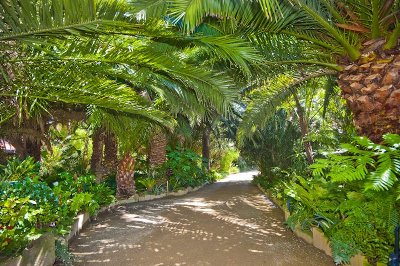 Seacove entrance & driveway