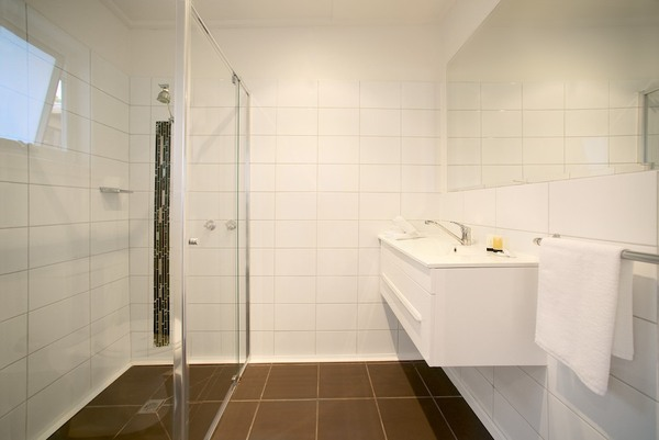 Shower Bathroom in 1br Apartment