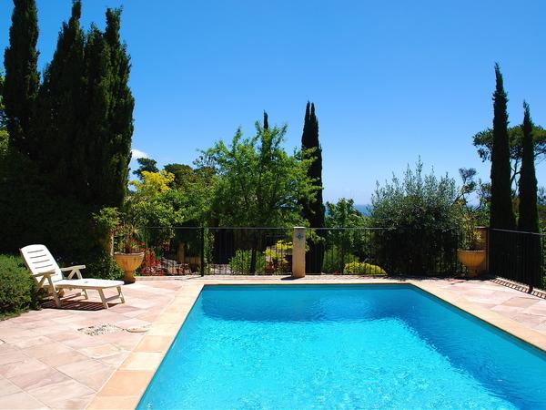Private inground salt pool with Mediterranean garden