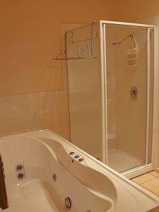 Downstairs spa bathroom