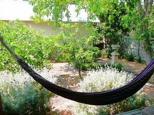 Cottage Hammock